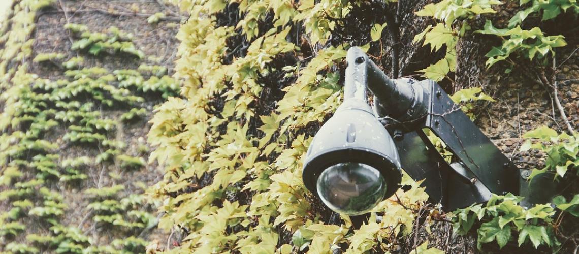 surveillance4